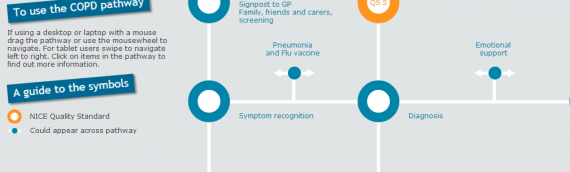 The COPD Pathway : COPD Series